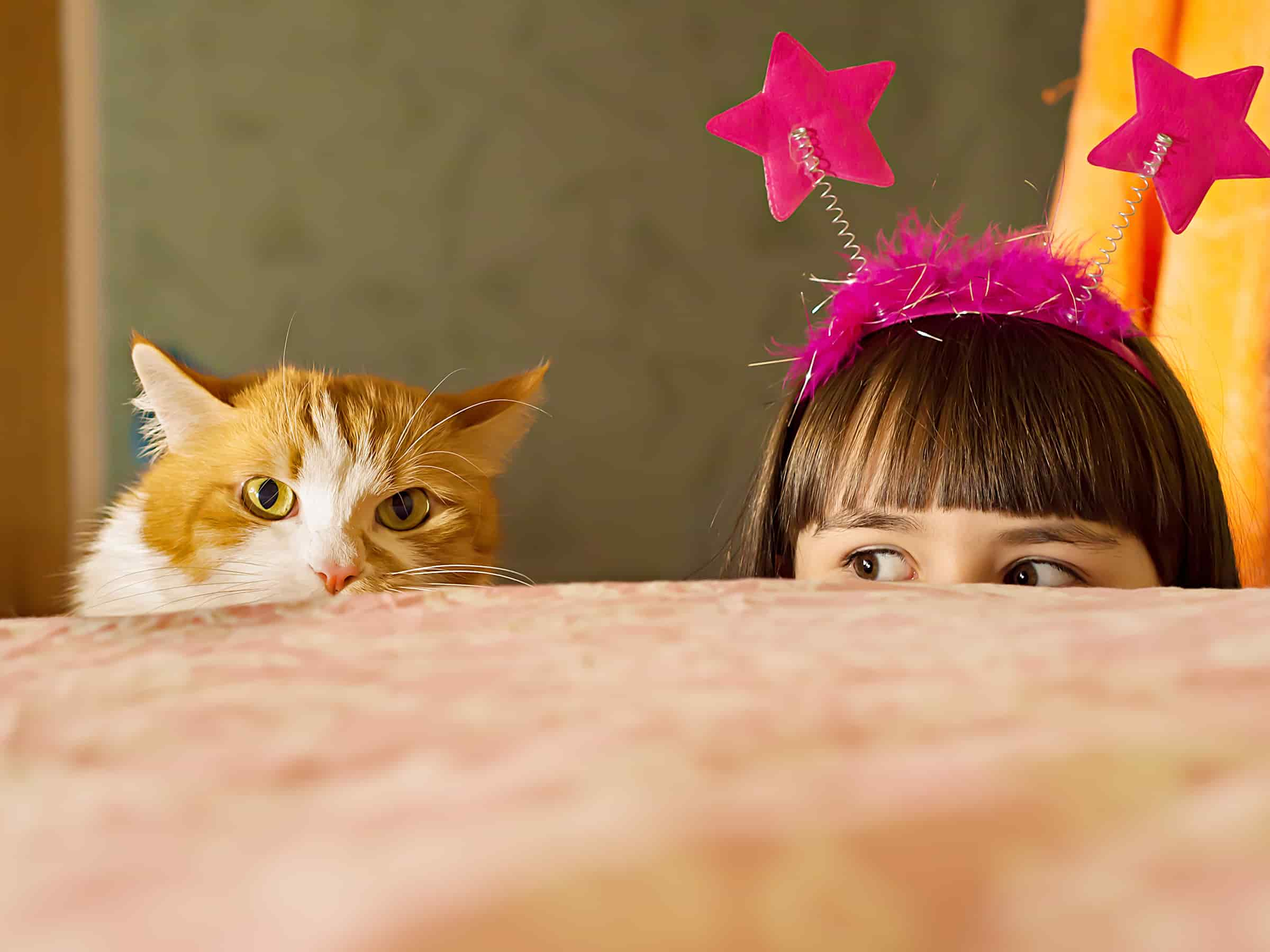 Special Species For Special Kids: A Tale of Cats and Autistic Children